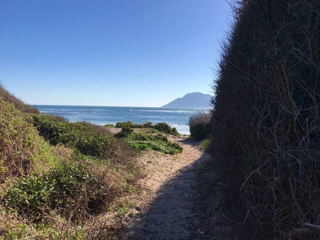 IMG 4032 Short Beach Walk - SEAFOAM
